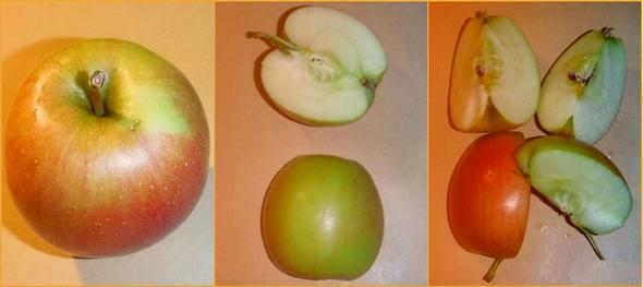 bütün elma